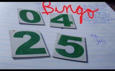8 de noviembre numeros para ganar la loteria hoy mismo/pales/tripleta/real nacional quiniela y pale