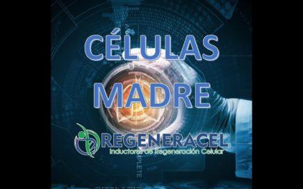 AVALIA gana dinero por internet con células madre