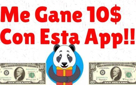 COMO GANAR DINERO EN PAYPAL Y AMAZON + COBRANDO 10$ CON LA MEJOR APP| GIFT PANDA