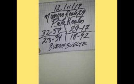 PALES PARA HOY DOMINGO 12/11/17 DE NOVIEMBRE PARA TODAS LAS LOTERIAS¡¡¡BUENA SUELTE!!!