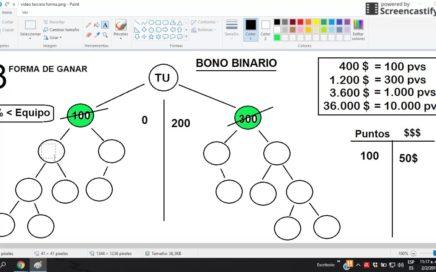 pay diamond  3ra FORMA DE GANAR DINERO (BONO BINARIO)