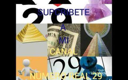 Trayler número real 29 ¡¡¡avansando !!!para una mejor ganancias!!!pegando le duro a las loterias
