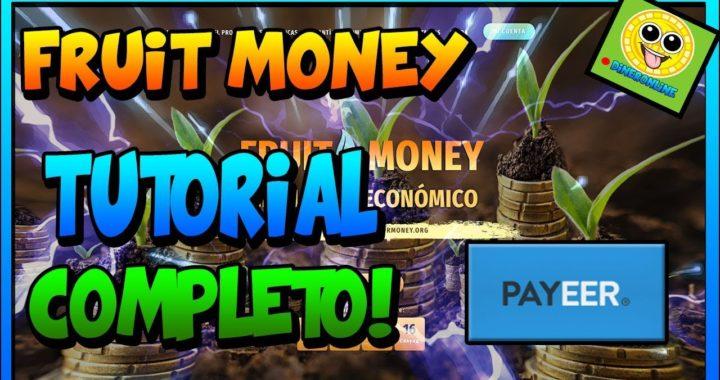Fruit Money Tutorial Completo! |GANA DINERO