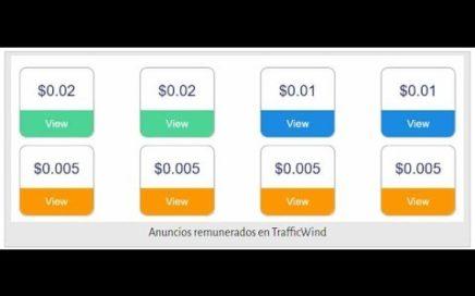 Gana dinero viendo anuncios con TrafficWindyoutube com