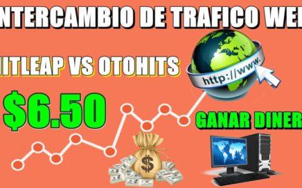 GANAR DINERO POR INTERCAMBIO DE TRAFICO WEB HITLEAP VS OTOHITS ( PRUEBAS DE PAGO ) NUEVO