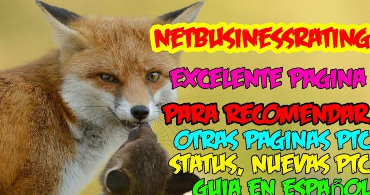 Netbusinessrating La Mejor Pagina de Status y Ranking sobre PTC | Netbusinessrating Tutorial Español