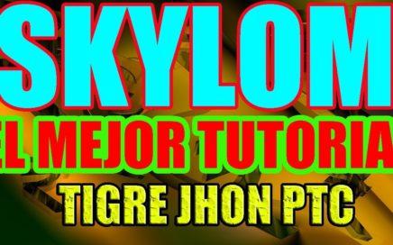 SKYLOM GANA DINERO PARA PAYPAL VIENDO VIDEOS DE YOUTUBE GRATIS | SKYLOM HERMANA DE BAYMACK Y SNUCKLS