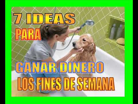 7 IDEAS DE NEGOCIO PARA FIN DE SEMANA