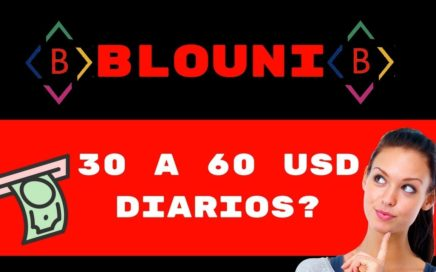 BLOUNI   PLAN DE PAGOS (REAL O ESTAFA)