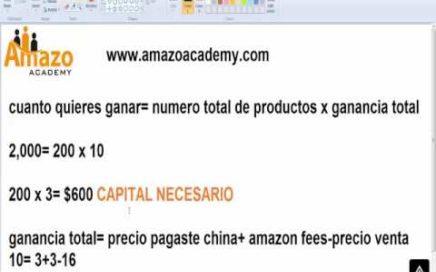 Cuanto puedo llegar a ganar vendiendo en Amazon y cuanto capital necesito invertir?