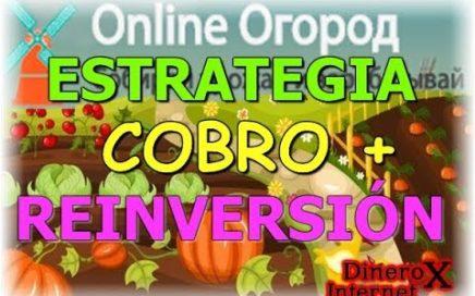 Online Ogorod Estrategia | Cobro + Reinversion |