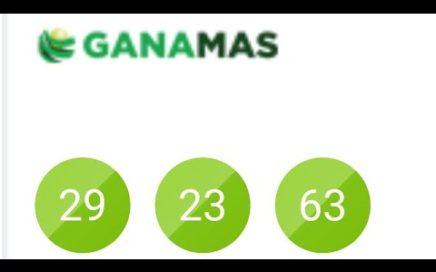 Bingo 29 Hay Santo 2923