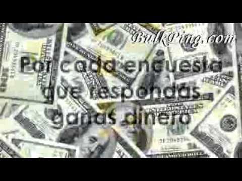 Gana Dinero Con Encuestas Remuneradas Por Internet  seo optimization website advertising bulkping