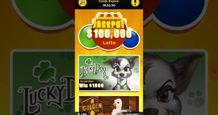 Lucky day gana dinero PayPal jugando lotería 2018