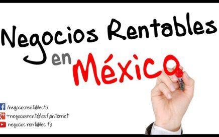Negocios Rentables en Mexico - Dinero y Pymes
