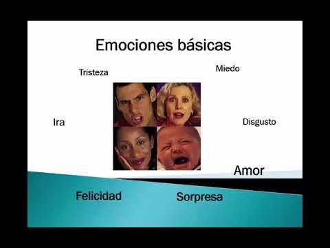 las dimensiones de la emoción  e introducción en los tipos de emociones