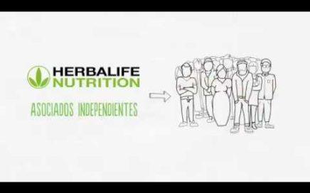 Cómo se gana dinero en Herbalife
