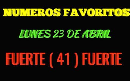 NÚMERO FAVORITOS PARA HOY LUNES 23 PARA TODAS LAS LOTERÍA