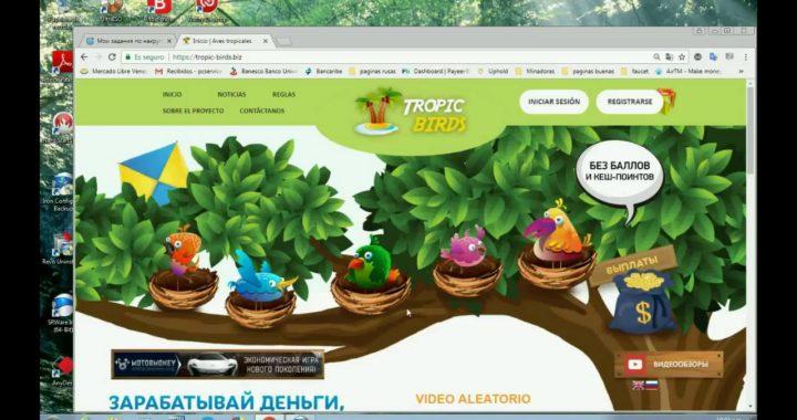 pagina para ganar rublos de varias formas con tropic birds 2018