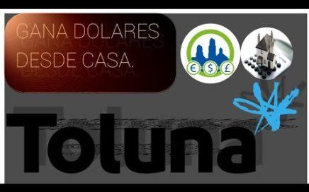 Toluna encuestas Ganando dinero en casa | Derrota la Crisis.