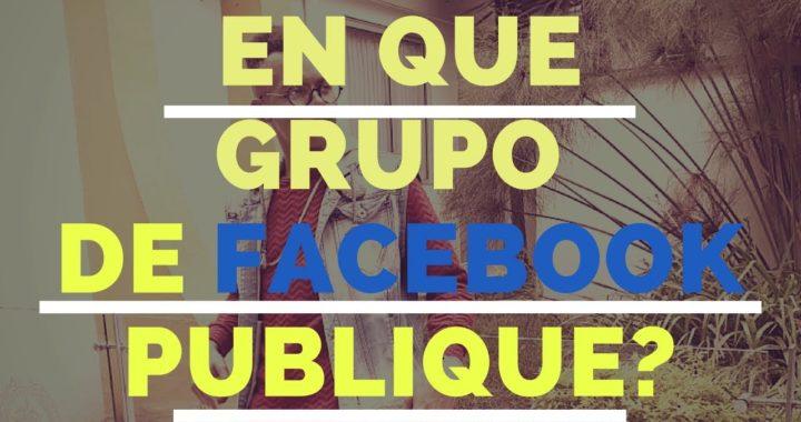 Como se en en que grupo de facebook publique mi producto? @MilloEmprende