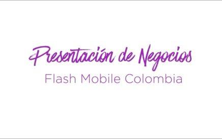 PRESENTACIÓN DE NEGOCIO FLASH MOBILE