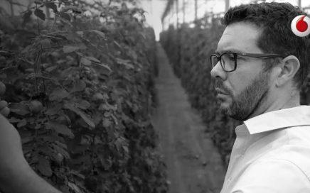 Soloraf vende tomates online 7 meses al año y gana dinero | Juan Pablo Seijo