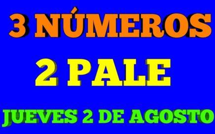 3 NÚMEROS 2 PALÉ SEGUROS PARA HOY JUEVES 2/08/2018 BINGO AYER COM EL PALE (56-28)
