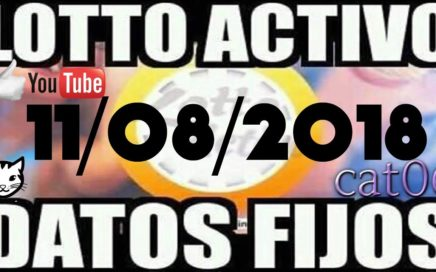 LOTTO ACTIVO DATOS FIJOS PARA GANAR  11/08/2018 cat06