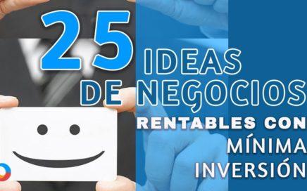 Otras 25 ideas de negocios rentables con mínima inversión