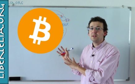 Como gané dinero con BitCoins: arbitraje con criptomonedas   Economía y Realidad   Libertelia