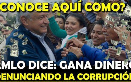 ¿NECESITAS UN DINERO EXTRA? AMLO PAGARA DENUNCIAS DE CASOS DE CORRUPCION - ESTADISTICA POLITICA