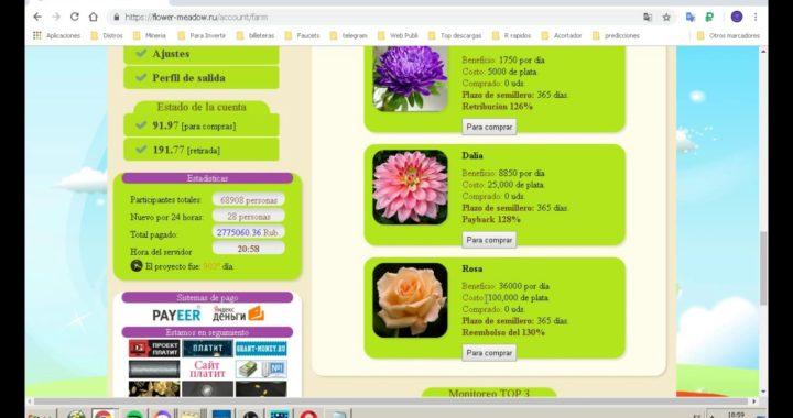 Flower Meadow Pagina Rusa Para Gana Rublos Dinero Sin Cash Point